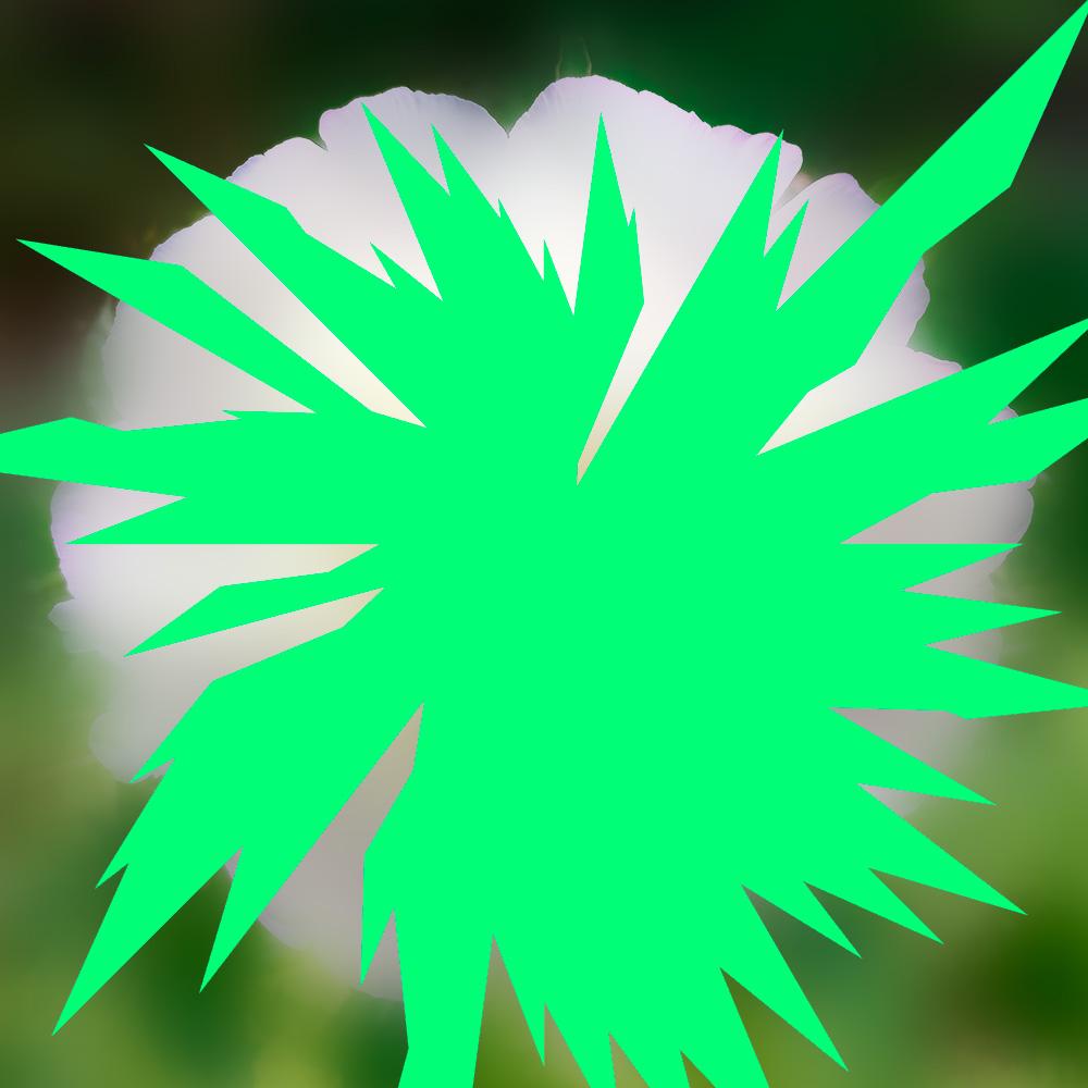 Etoile-insecte-fleur Invasion sans précédent London