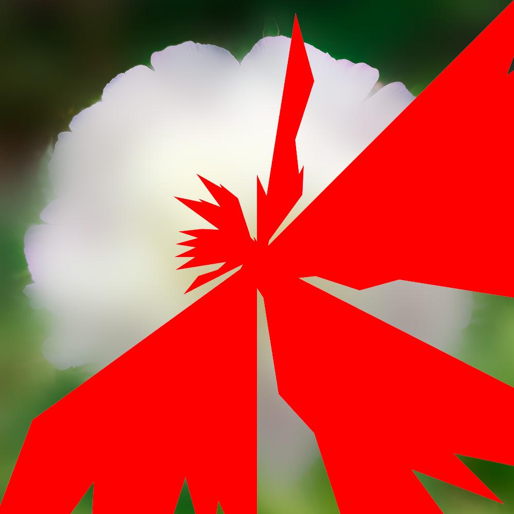 Narra Etoile-insecte-fleur J'accuse Zola