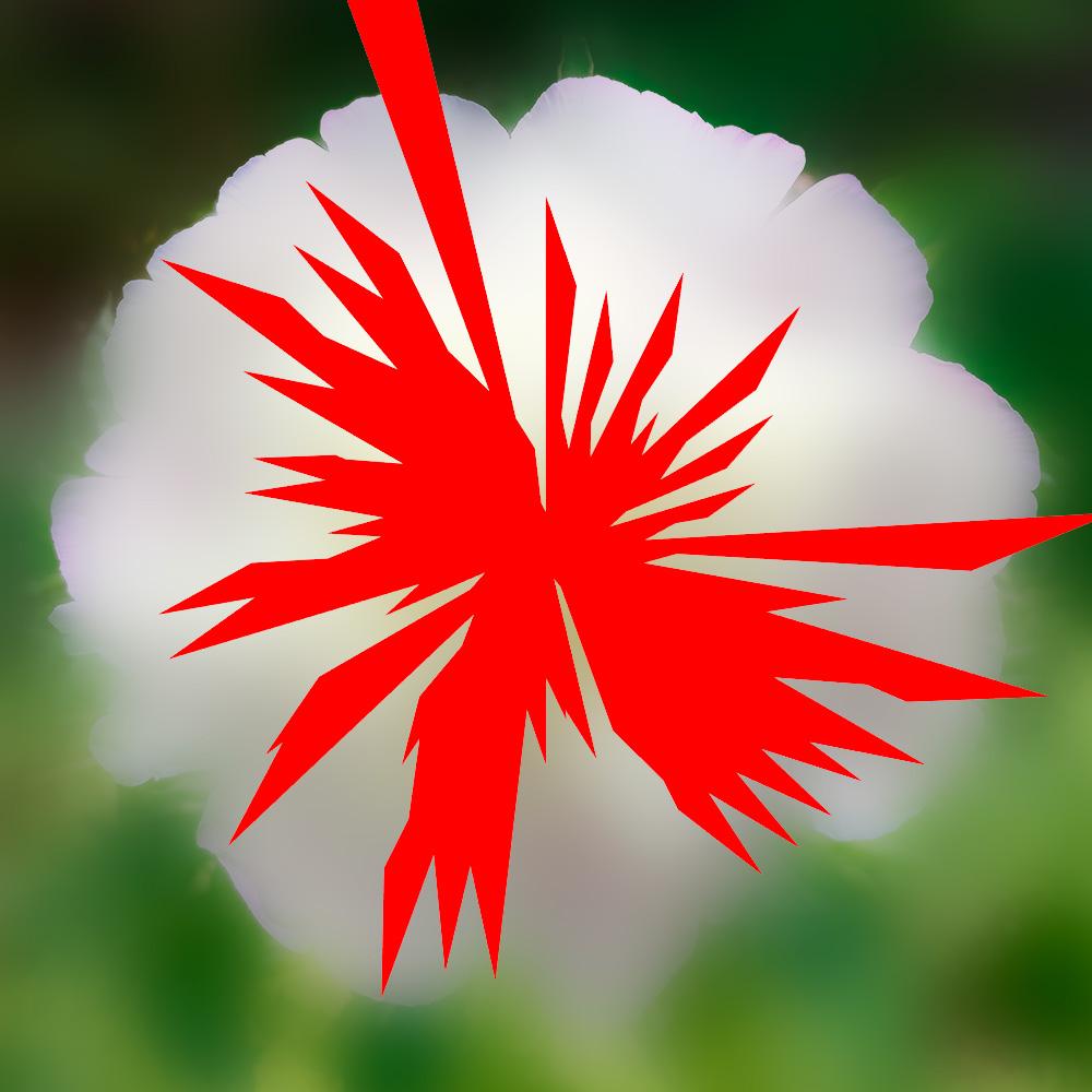 Narra-insecte-fleur L'Homme qui plantait arbres Giono